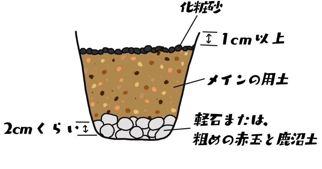 鉢に用土を入れる