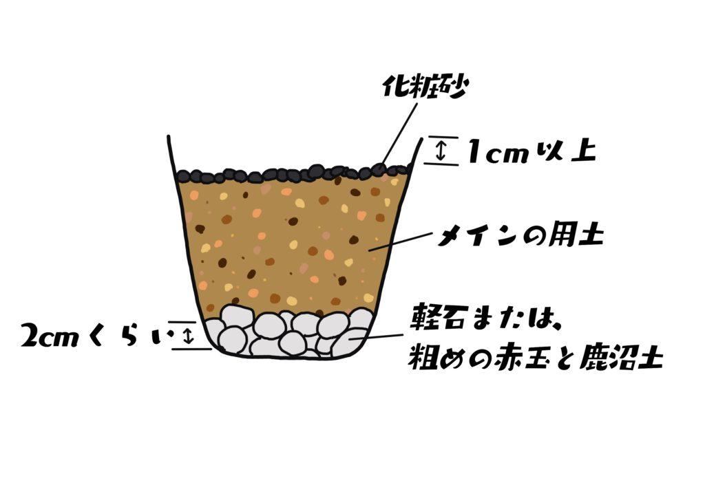 鉢底には、軽石または大きめの赤玉土か鹿沼土を入れます。