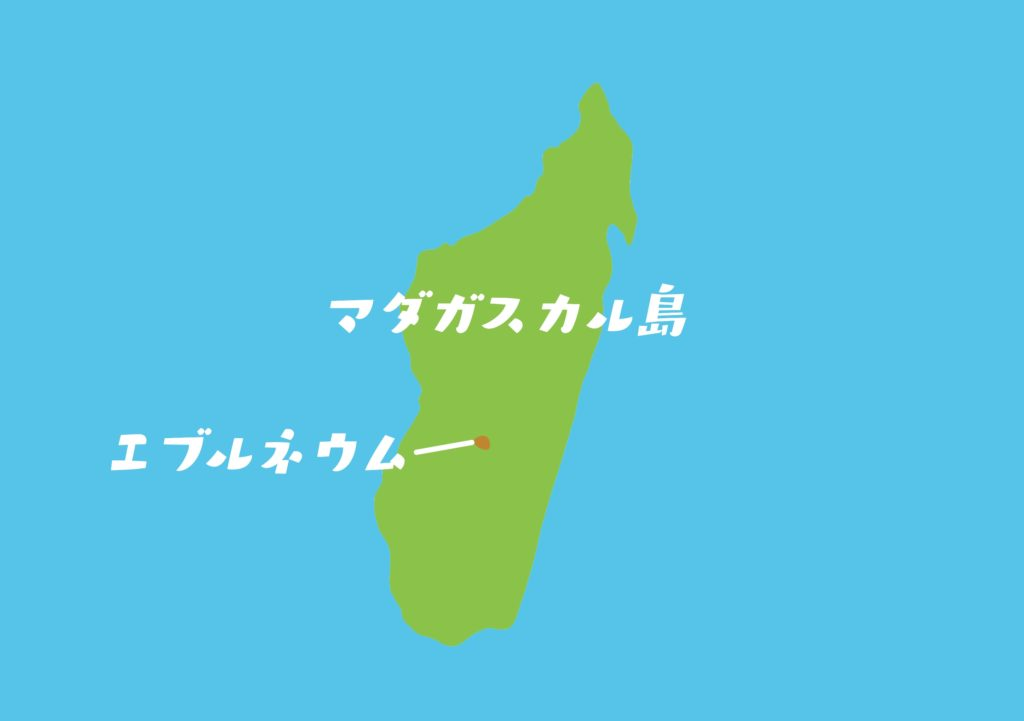 エブルネウムはマダガスカルのこの辺に自生しているよ