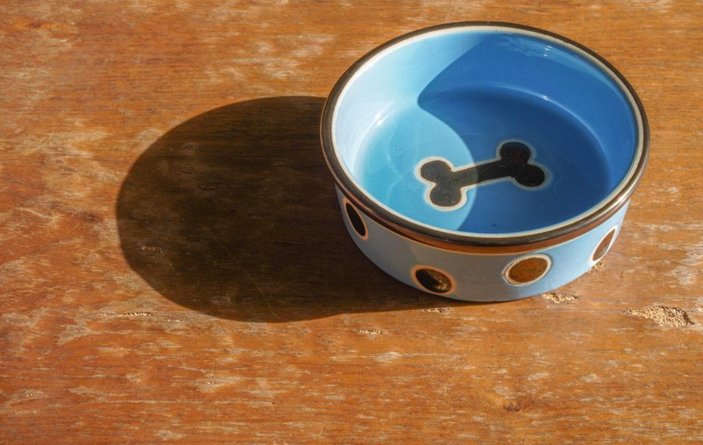 エサ用の皿