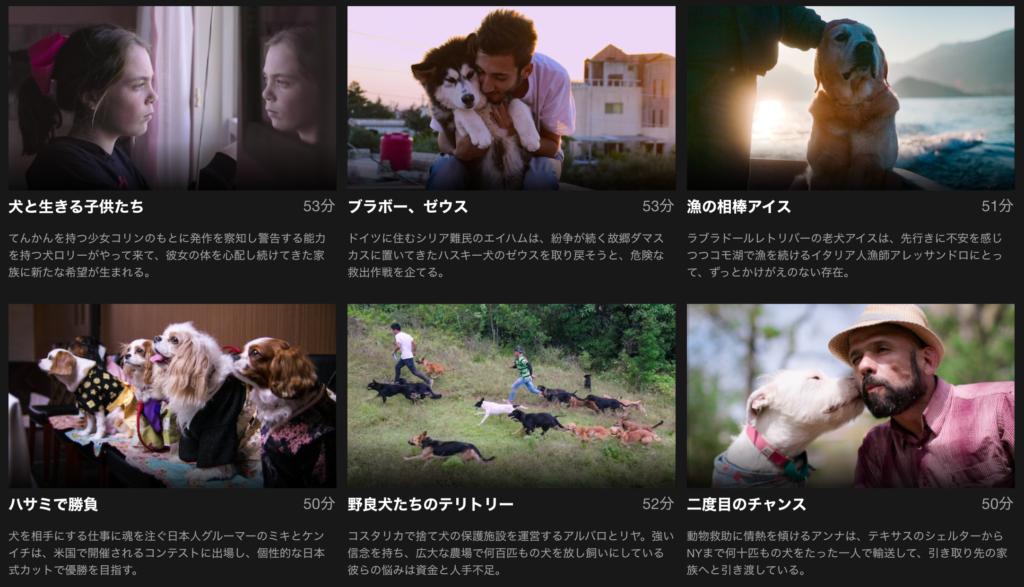 6つのストーリーからなります。
