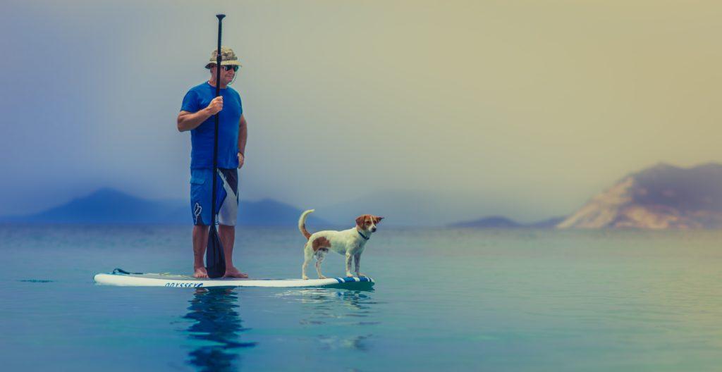 キャプ場で犬と一緒に楽しもう!