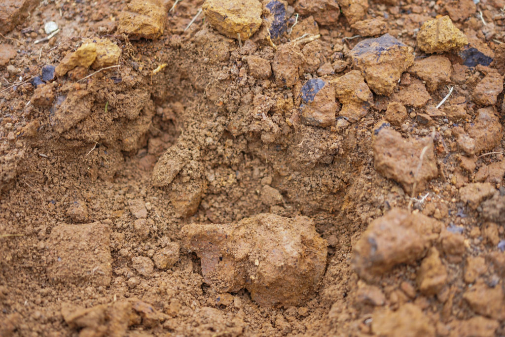 庭の土はバリバリの関東ローム層の粘土質の赤土